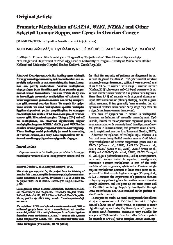 Adult Guide in Hradeckralove