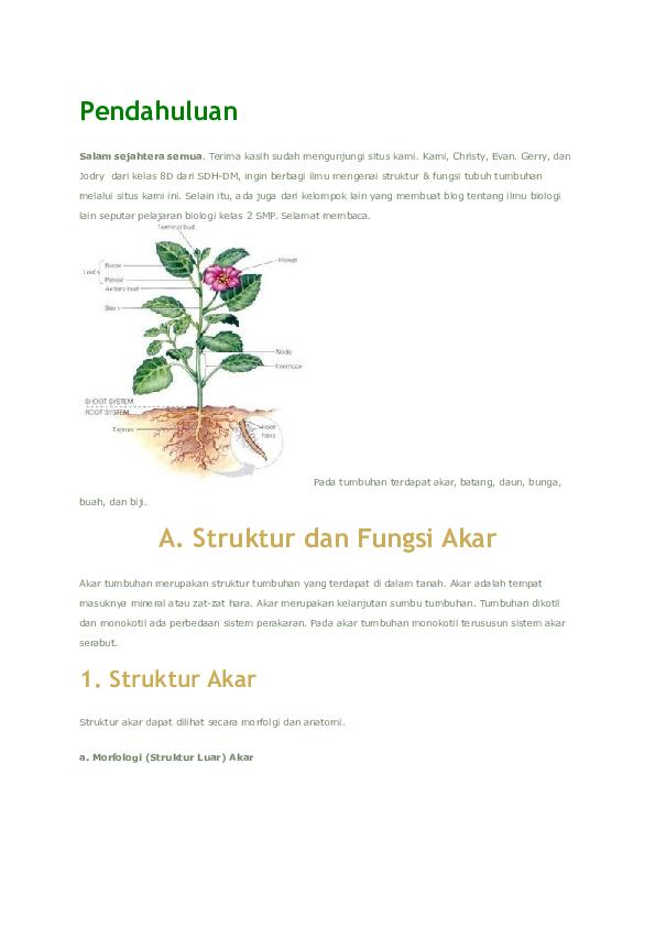 Doc Struktur Tumbuhan Akbar Kocot Academia Edu