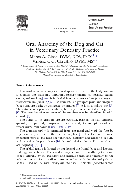Oral Anatomy Of The Dog And Cat In Veterinary Dentistry Practice