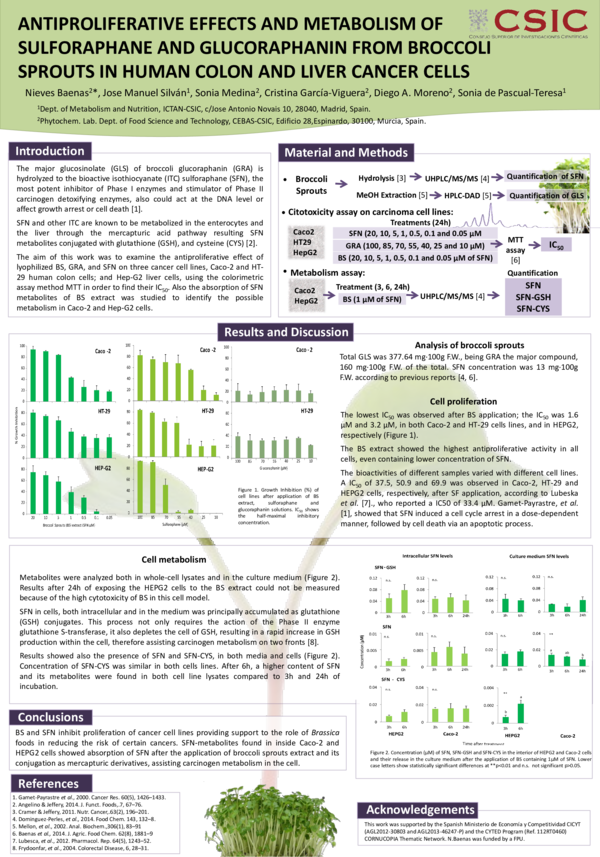 Pdf Antiproliferative Effects And Metabolism Of Sulforaphane And Glucoraphanin From Broccoli Sprouts In Human Colon And Liver Cancer Cells Sonia Medina Nieves Baenas And Sonia Pascual Teresa Academia Edu