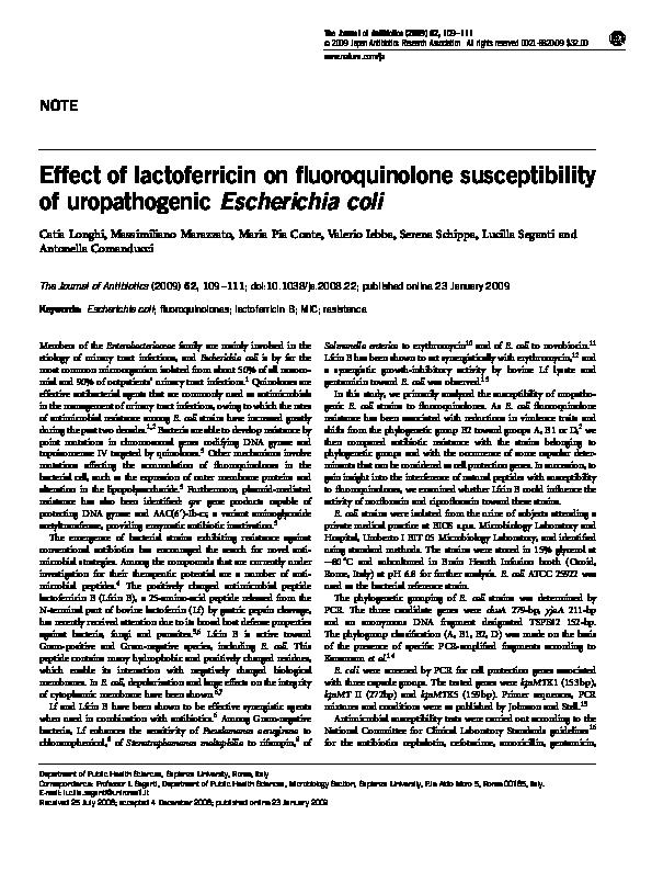 nitrofurantoin e coli