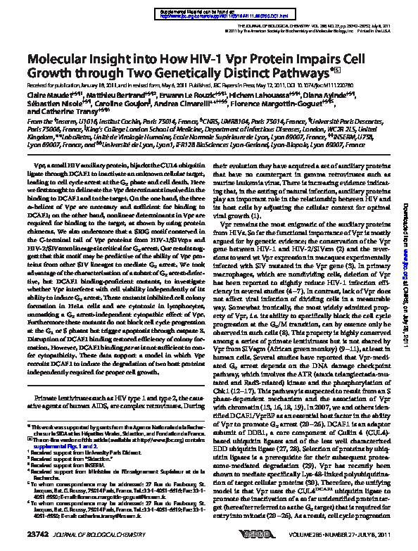 (PDF) Molecular Insights Into the Evolutionary Pathway of