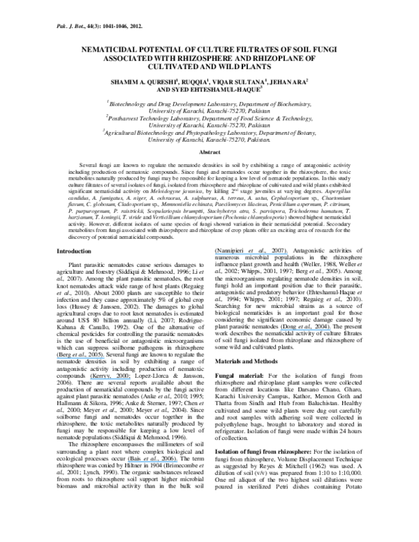 nematode-toxic fungi and their nematicidal metabolites