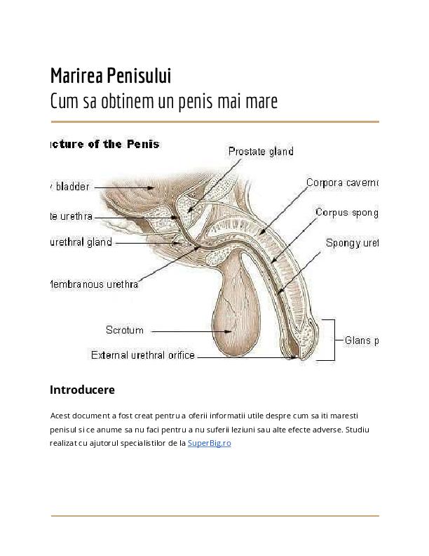 ce să faci ce să mărești dimensiunea penisului
