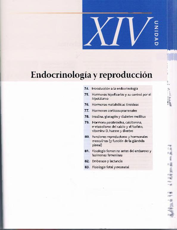 pcform metformin perdita di peso medio