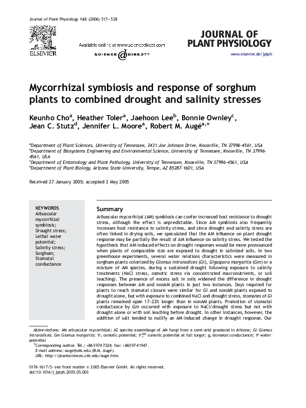 Mycorrhizal Symbiosis Pdf