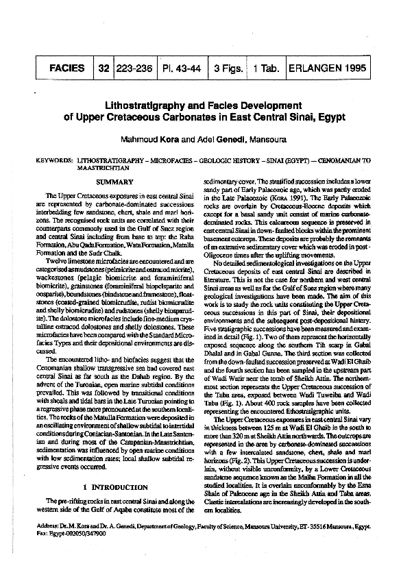 PDF) Lithostratigraphy and facies development of upper