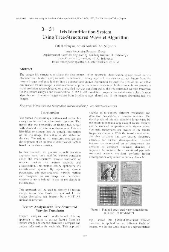 PDF) Iris Identification System Using Tree-Structured