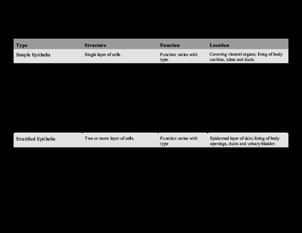 PDF) Summary of Membranous Epithelial Tissue | Lindo Mcgud