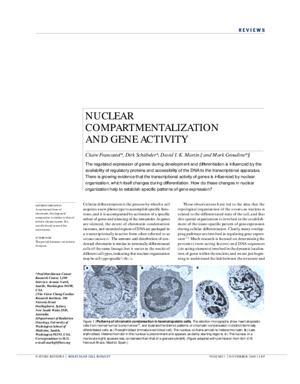 PDF) Nuclear compartmentalization and gene activity   Dirk