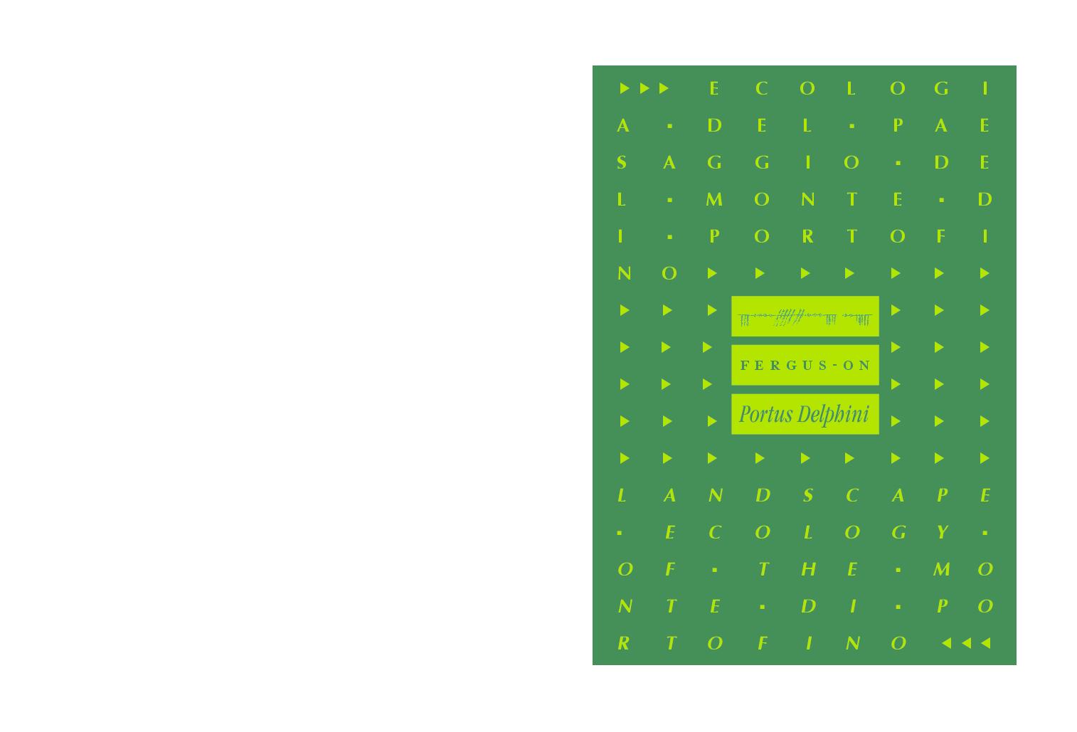 Happy Planner Medium Metà foglio di carta di riempimento 60//pkg Carta di colore