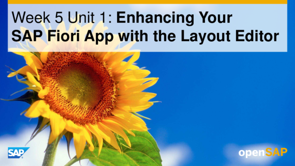 PDF) Week 5 Unit 1: Enhancing Your SAP Fiori App with the Layout