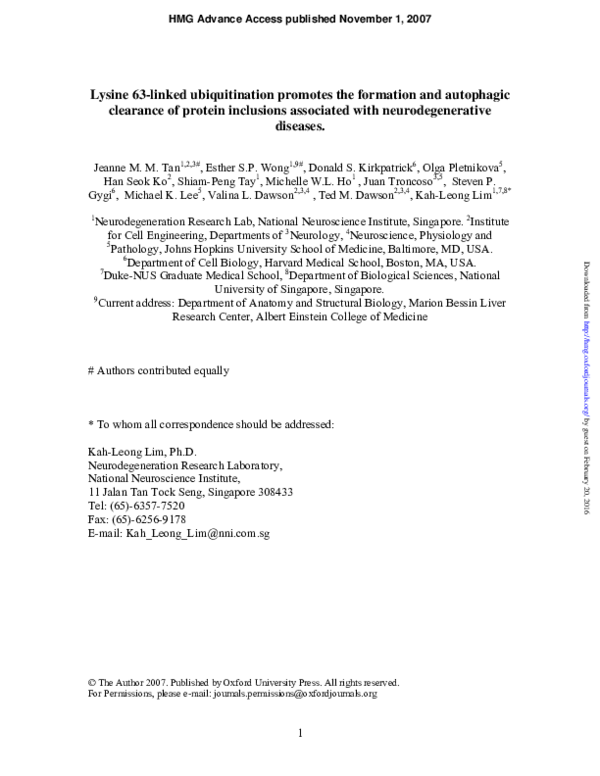 PDF) Lysine 63-linked ubiquitination promotes the formation