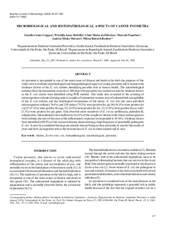 Pdf Microbiological And Histopathological Aspects Of Canine Pyometra Nilson Roberti Benites Academia Edu