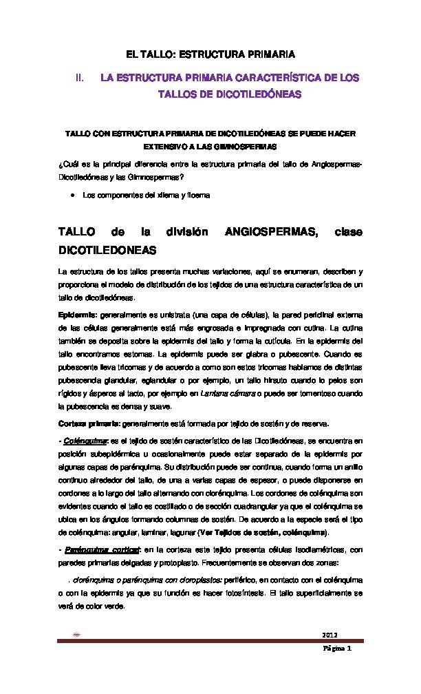 Pdf El Tallo Estructura Primaria Ii La Estructura
