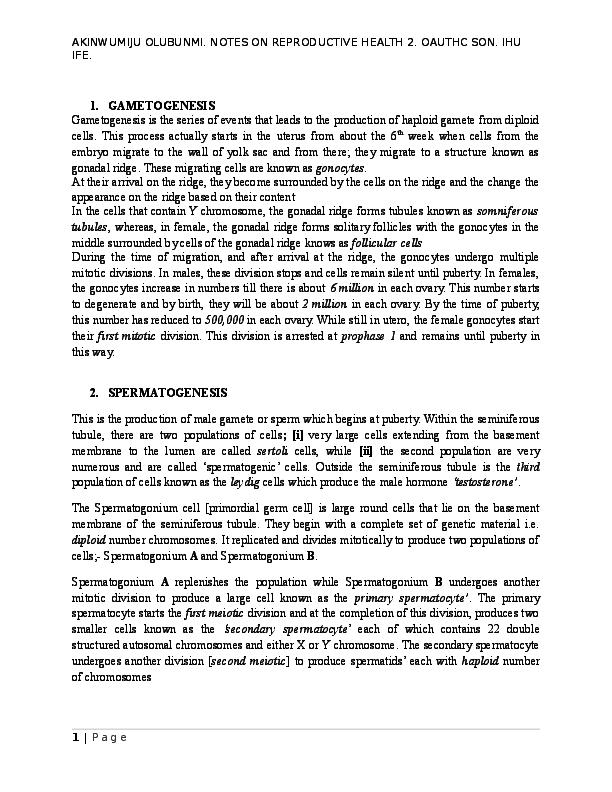 DOC) LECTURE NOTES ON GAMETOGENESIS, SPERMATOGENESIS