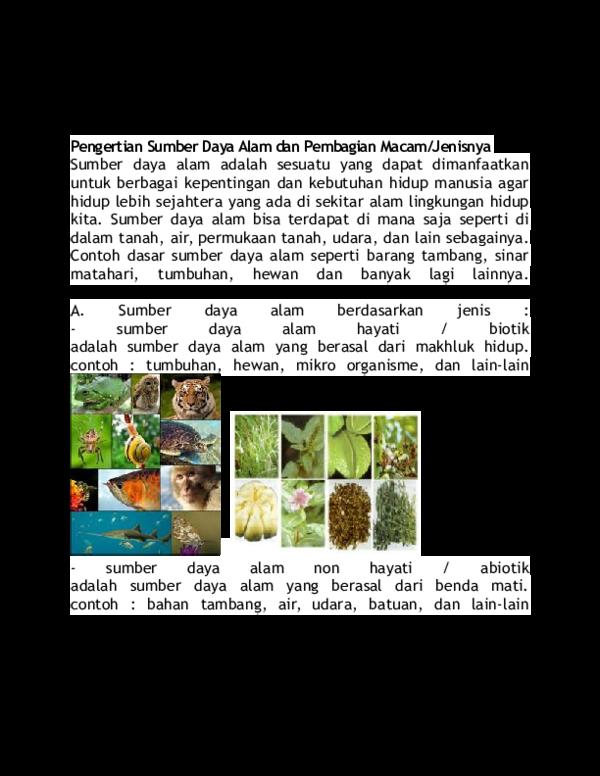 410 Koleksi Gambar Alam Hewan Dan Tumbuhan HD