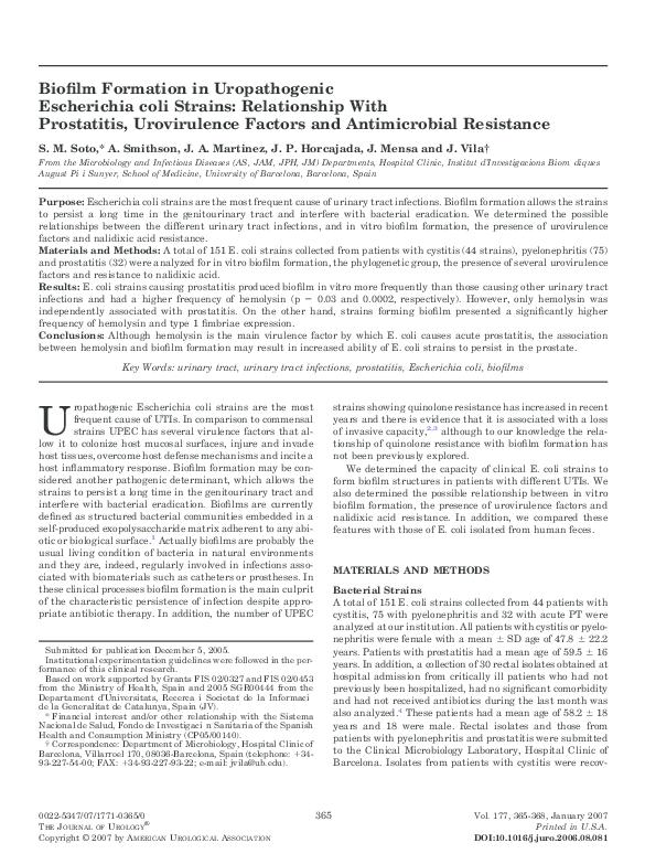 biofilm de prostatitis