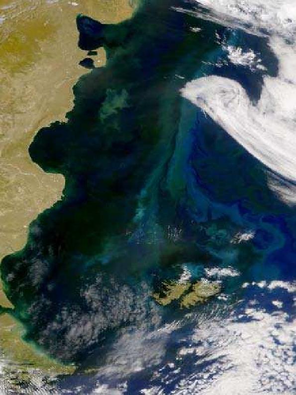 Pdf La Corriente De Malvinas Ramas Y Frentes Oceanicos En El Mar Patagonico Alberto Piola Academia Edu