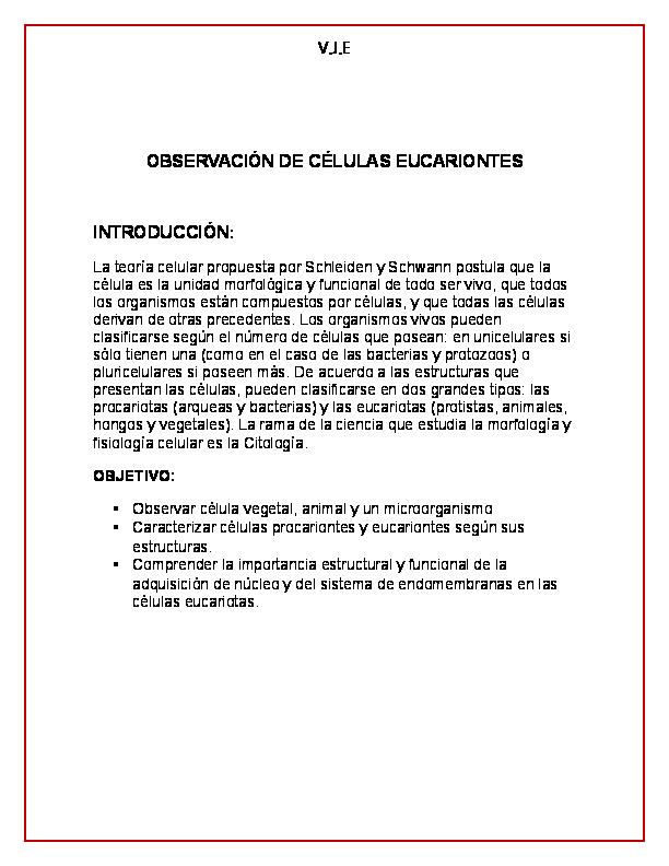 Doc Observación De Células Eucariontes Introducción