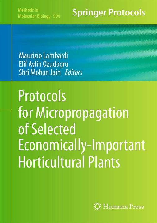 PDF) Micropropagation of Rubus and Ribes spp | Ewa Dziedzic