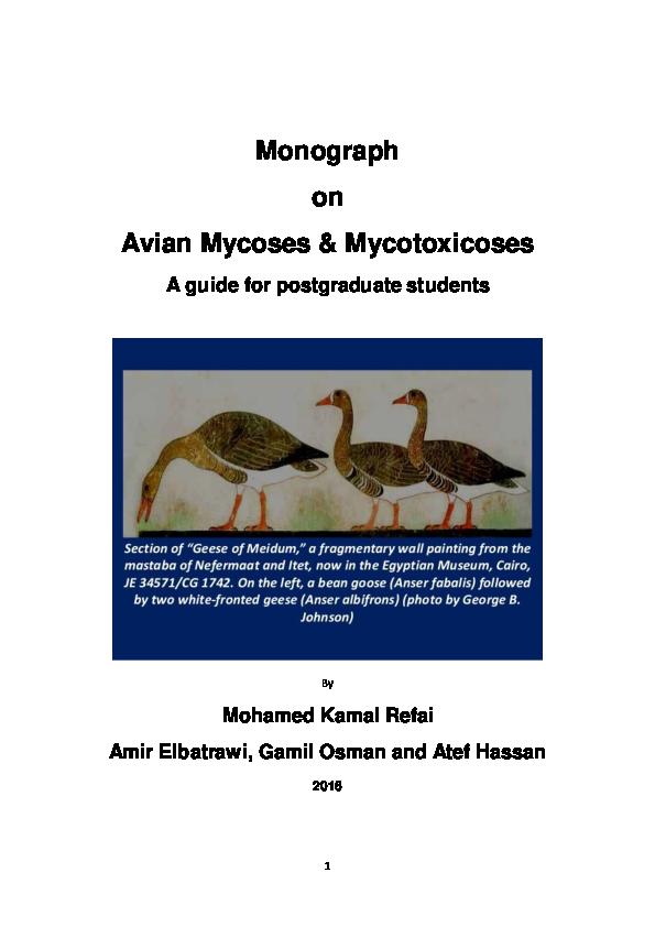 TEX EX ORIGINAL GROUSE CUSHION PANEL GAME BIRD 100/% NATURAL ORGANIC COTTON