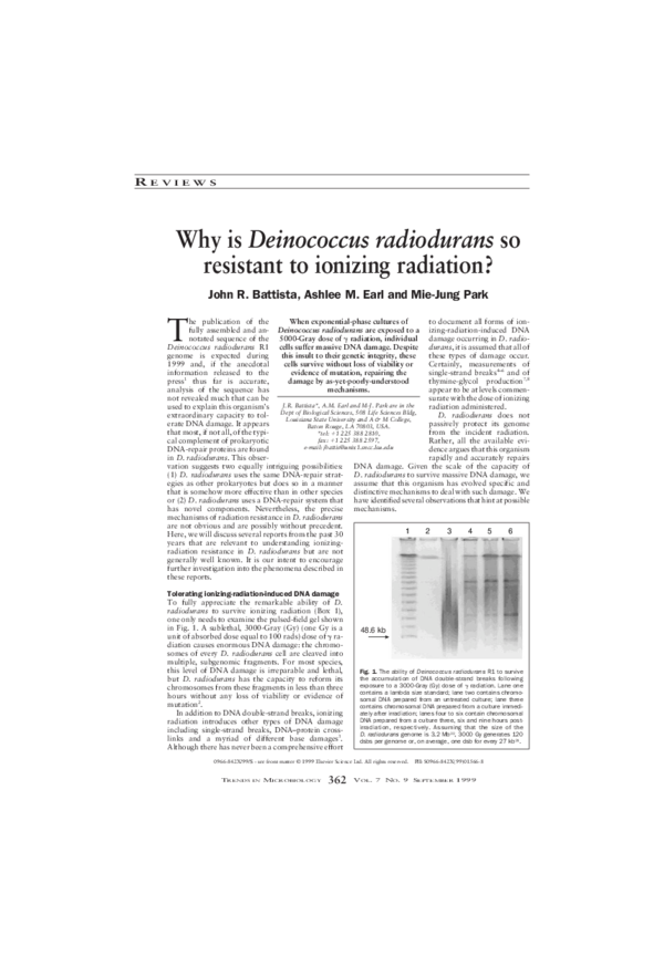 PDF) Why is Deinococcus radiodurans so resistant to ionizing