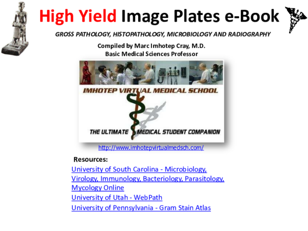 PDF) High Yield Image Plates Gross - Pathology, Histopathology