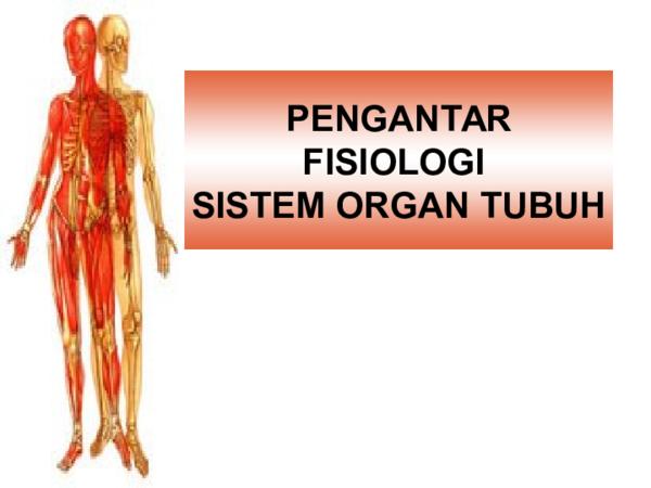 Ppt Pengantar Anatomi Dasar Dan Fisiologi Kurniawan Mokodompit Academia Edu