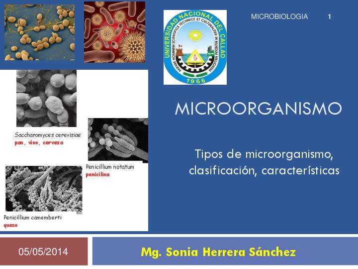 Pdf Microorganismos Clasificacion Y Caracteristicas Alonso Flores Bello Academia Edu