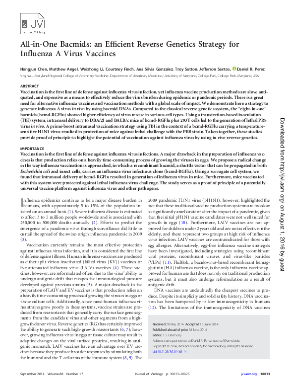 PDF) All-in-one bacmids: an efficient reverse genetics