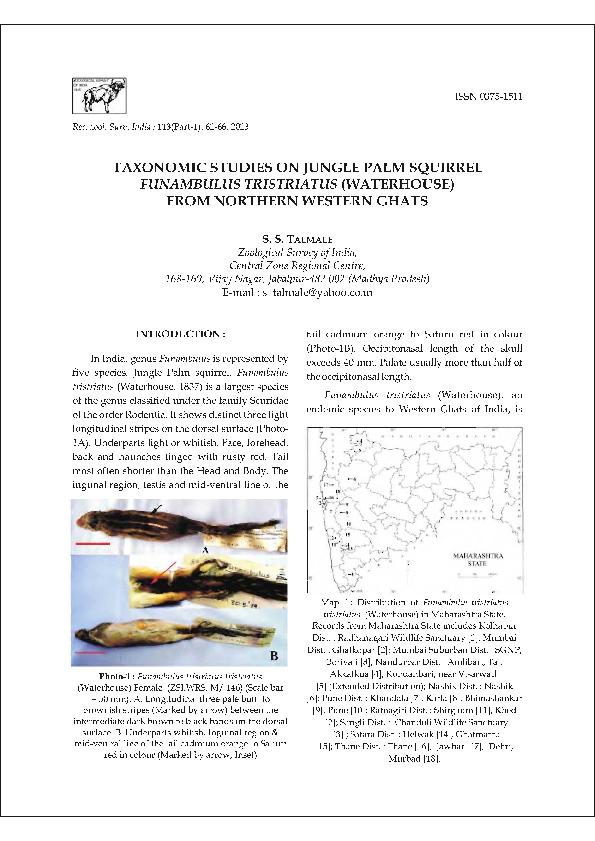 PDF) Taxonomic studies on jungle palm squirrel Funambulus