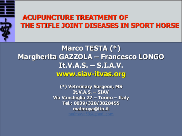 PDF) ACUPUNCTURE TREATMENT OF THE STIFLE JOINT DISEASES IN