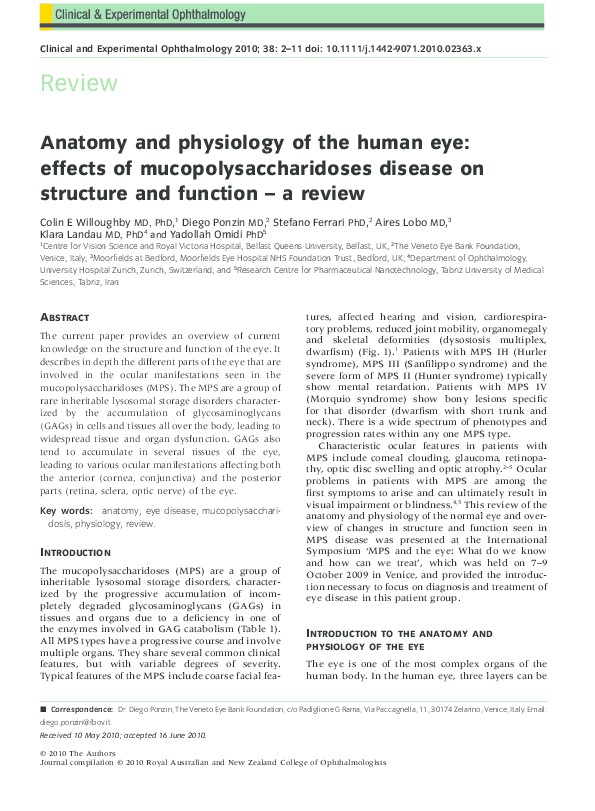 Pdf Anatomy And Physiology Of The Human Eye Effects Of