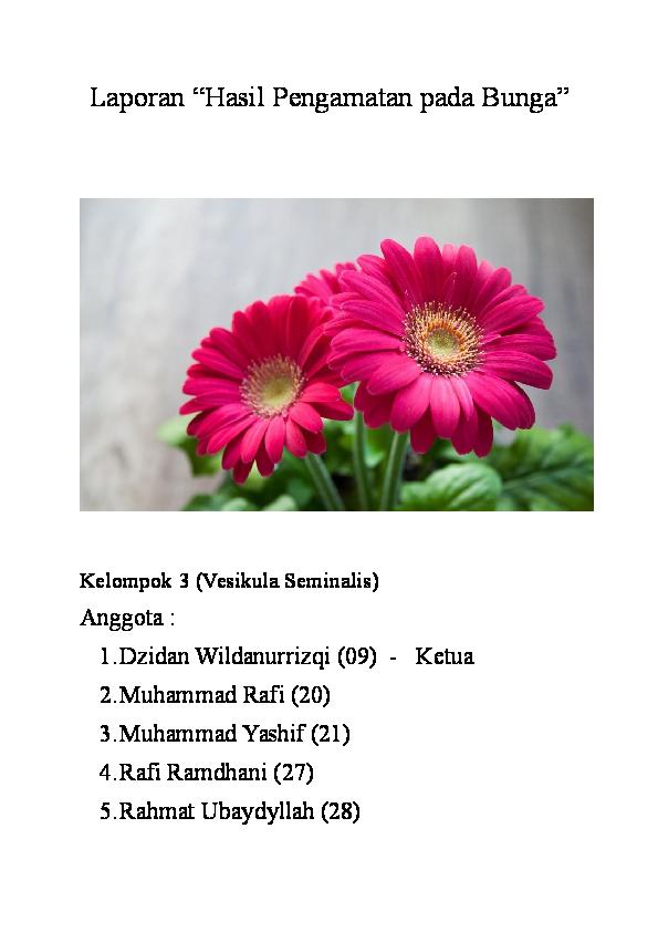 Download 81 Gambar Bunga Sempurna Beserta Keterangan HD Terbaik