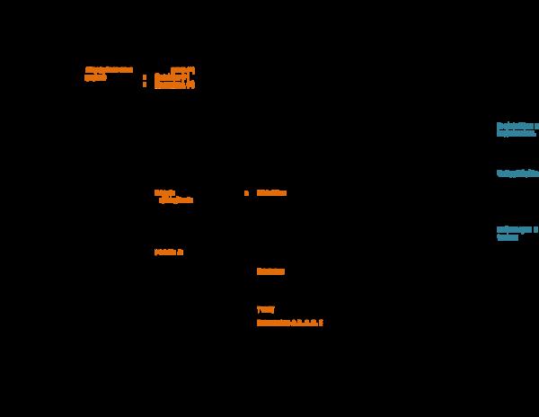 R prowazekii patogénesis de la hipertensión