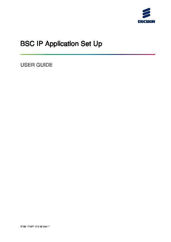 PDF) BSC IP Application Set Up | Luís Carlos - Academia edu