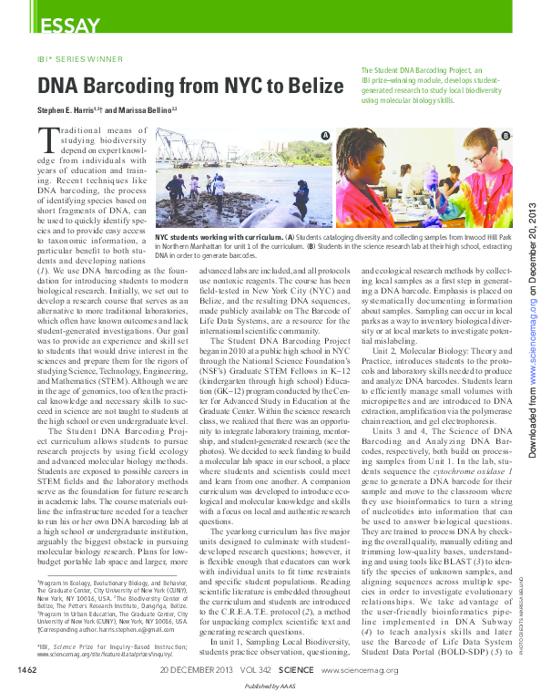 Pdf dna newspaper