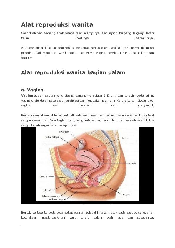 Doc Alat Reproduksi Wanita Firman Ibrahim Academia Edu