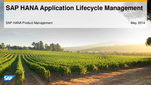 PDF) SAP HANA Application Lifecycle Management SAP HANA