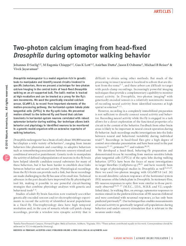 PDF) Two-photon calcium imaging from head-fixed Drosophila