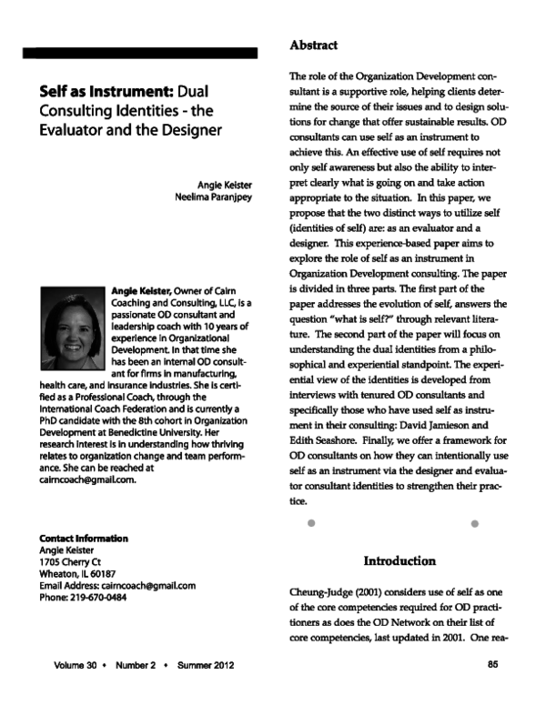 Self as Instrument Dual Consulting Identities the Evaluator and the Designer