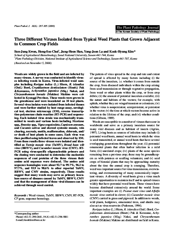 PDF) Three different viruses isolated from typical weed plants that