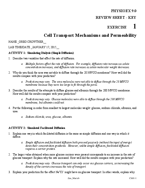 Cell Transport Review Worksheet Answers