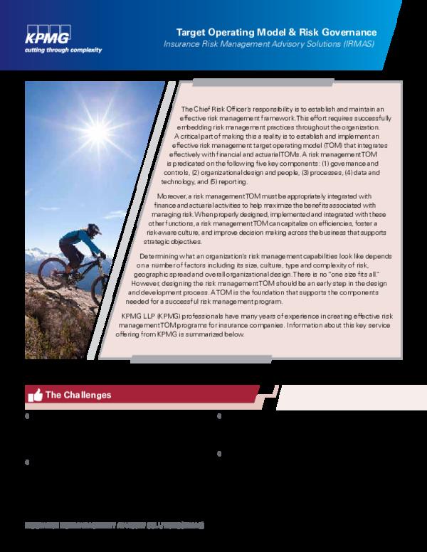PDF) Target Operating Model & Risk Governance Insurance Risk