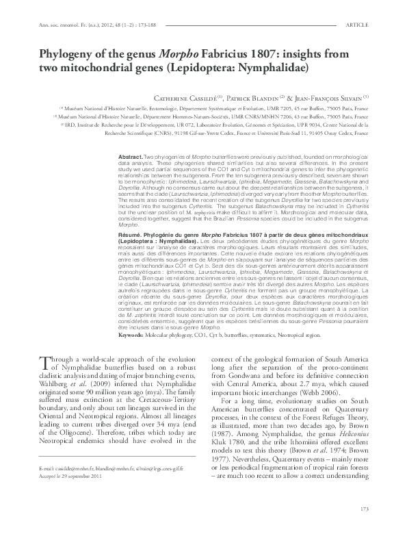 PDF) Phylogeny of the genus Morpho Fabricius 1807: insights