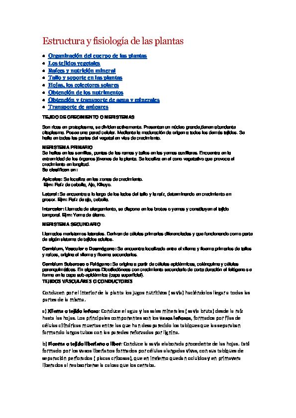 Doc Estructura Y Fisiología De Las Plantas Orlando