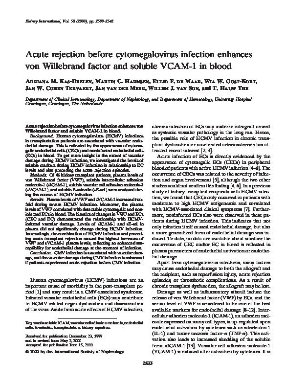 citomegalovirus pe penis