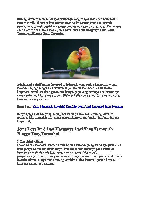 Download 500+ Foto Gambar Burung Lovebird Dan Nama Jenisnya HD