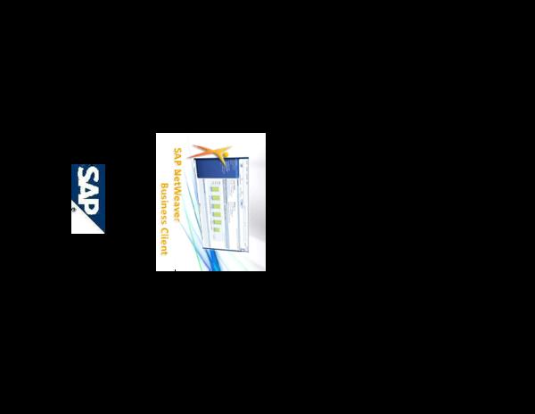 PDF) SAP NetWeaver Business Client (NWBC | leo vid - Academia edu